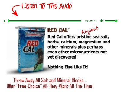 Listen To The New Audio On The RED CAL Page